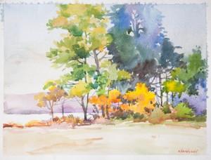 A Hein Kyaw